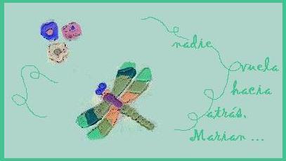 re-vuelos de libélula